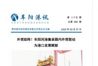 【第六十九期】车阳河港集装箱内外贸联动 为港口发展赋能